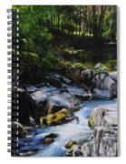 River In Wales Spiral Notebook