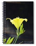 Road Side Beauty Spiral Notebook