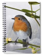 Robin On Mistletoe Spiral Notebook