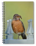 Robin With Worm I Spiral Notebook