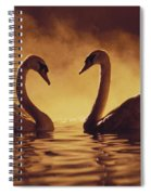Romantic African Swans Spiral Notebook