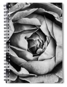 Rose Closeup In Monochrome Spiral Notebook