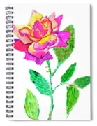 Rose, Watercolor Painting Spiral Notebook