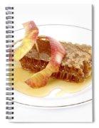 Rosh Hashana Spiral Notebook