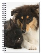 Rough Collie With Black Rabbit Spiral Notebook