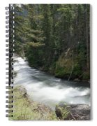 Running Through The Forest Spiral Notebook
