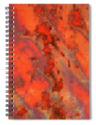 Rust Abstract Spiral Notebook