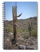 Saguaro Skeleton Spiral Notebook