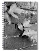 Savannah Wall Spiral Notebook