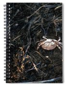 Scuttling To Safety Spiral Notebook
