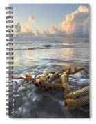 Sea Jewel Spiral Notebook