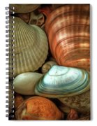 Sea Pebbles With Shells Spiral Notebook