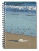 Seafoam Detail On Waters Edge Spiral Notebook