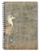 Seagull - Jersey Shore Spiral Notebook
