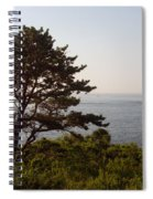 Seaside Pine Spiral Notebook