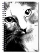 Shelby Spiral Notebook