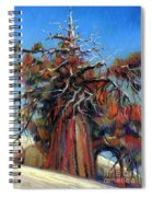 Sierra Juniper Spiral Notebook