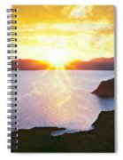 Silhouette Of Lone Cardon Cactus Plant Spiral Notebook