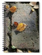 Silver Birch Leaves Lying On A Brick Path In A Cheshire Garden On An Autumn Day   England Spiral Notebook