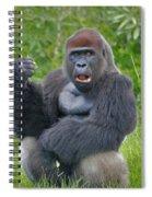 1- Silverback Western Lowland Gorilla  Spiral Notebook