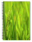 Skn 2913 Yet To Collect The Yield Color Spiral Notebook