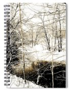 Snow-covered Stream Banks, Pennsylvania Spiral Notebook