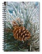 Snowy Pine Cones Spiral Notebook