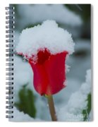 Snowy Red Riding Hood Spiral Notebook