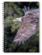 Soaring Spiral Notebook