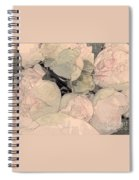 Soft Pink Peonies Spiral Notebook