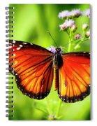 Soldier Butterfly Spiral Notebook