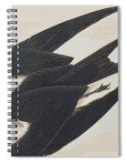 Sooty Tern Spiral Notebook