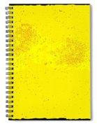 Space Spiral Notebook