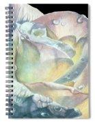 Sparkler Spiral Notebook