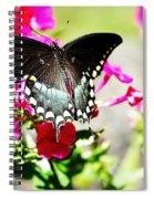 Spicebush Swallowtail Spiral Notebook