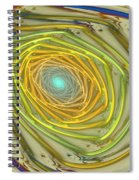 Spiral Rainbow Spiral Notebook