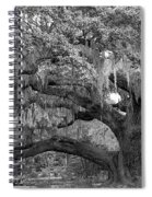 Sprawling Live Oak Spiral Notebook