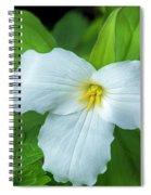 Spring Trillium Spiral Notebook
