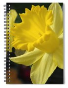Spring Yellow Spiral Notebook