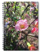 Springtime In The South Spiral Notebook