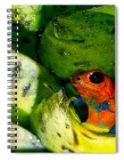 Strawberry Poison Dart Frog Spiral Notebook