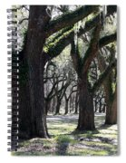 Strong Trees In The South Spiral Notebook