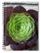 Succulent Rose Spiral Notebook