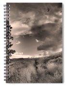 Summer Skies Spiral Notebook