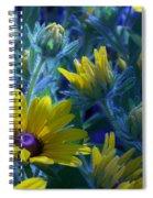 Sun Glory Series Spiral Notebook