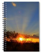 Sun Rays At Sunset With Tree And Saguaro Spiral Notebook