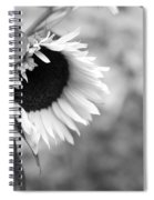 Sunflower Garden Spiral Notebook