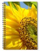 Sunflowers Art Prints Sun Flower Giclee Prints Baslee Troutman Spiral Notebook