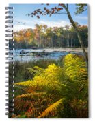 Sunrise In The Swamp Spiral Notebook
