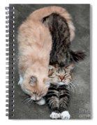 Sweet Couple Spiral Notebook